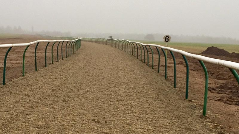 Al Bahathri gallop at Newmarket re opens after resurfacing with Martin Collins Polytrack