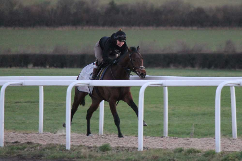 Andrew Balding Racing adds new Martin Collins Polytrack™ gallop to Park House Stables facilities