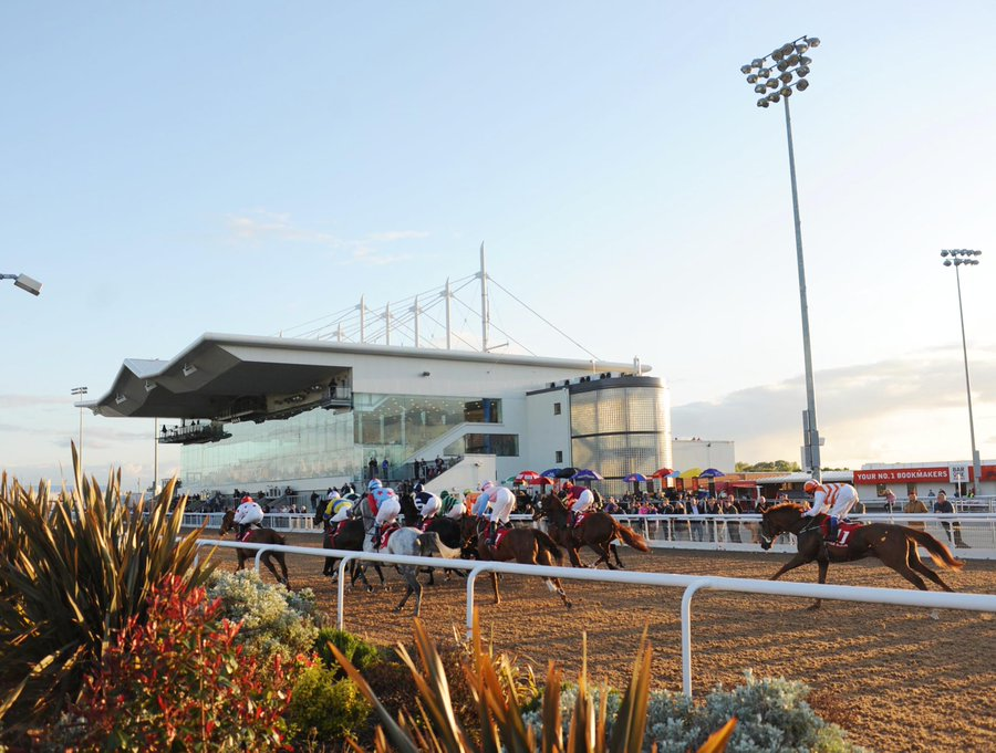 Martin Collins appointed to replace Dundalk Stadium's racing surface with a new Polytrack in early 2020.